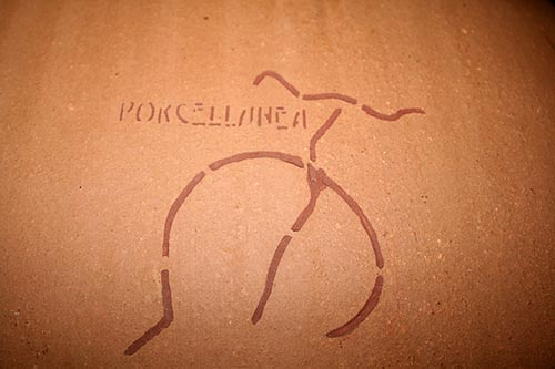Porcellanea